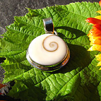 Indian Shiva Shell Pendant with smooth Rim 925 Silver