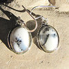 Dendritic Opal Earrings -  925 Silver Jewelry