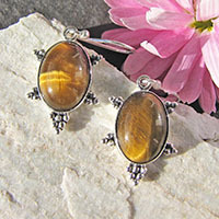 Indian Tiger's-eye Earrings • Design in 925 Silver